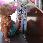 Die Qual der Bücherwahl